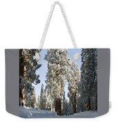 Sequoia National Park 4 Weekender Tote Bag