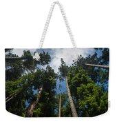 Sequoia Park Redwoods Reaching To The Sky Weekender Tote Bag