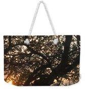 Setting Sun In Tree Weekender Tote Bag