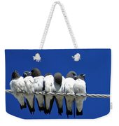 Seven Swallows Sitting Weekender Tote Bag