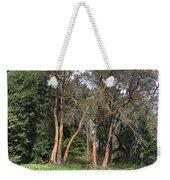 Seward Park Trees Weekender Tote Bag
