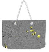 Sfscl00303 Weekender Tote Bag