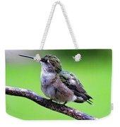 Shades Of Green - Ruby-throated Hummingbird Weekender Tote Bag
