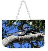 Shadowy Blue Jay Weekender Tote Bag