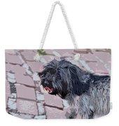 Shaggy Pup Abstract Weekender Tote Bag