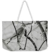 Sharp-shinned Hawk Black And White Weekender Tote Bag