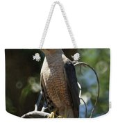 Sharp Shinned Hawk Weekender Tote Bag