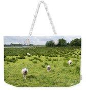 Sheep Animals Weekender Tote Bag