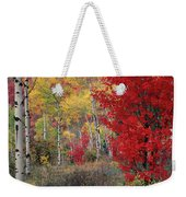 Sheep Canyon In Autumn Weekender Tote Bag