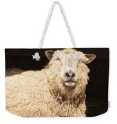 Sheep In Stable 2 Weekender Tote Bag