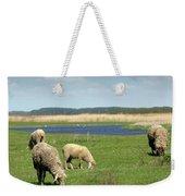 Sheep On Pasture Nature Farm Scene Weekender Tote Bag