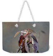 Shimmering Wings- Dragonfly Weekender Tote Bag