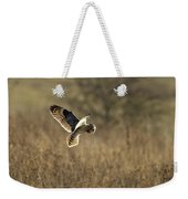 Short-eared Owl About To Strike Weekender Tote Bag