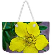 Shrubby Cinquefoil On Iron Creek Trail In Sawtooth National Wilderness Area-idaho  Weekender Tote Bag