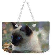 Siamese Cat Hiding Weekender Tote Bag