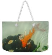 Siamese Fighting Fish 1 Weekender Tote Bag