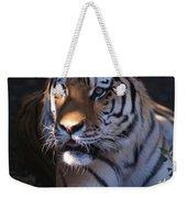 Siberian Tiger Executive Portrait Weekender Tote Bag