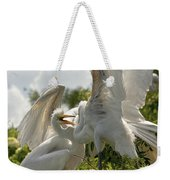 Sibling Squabble Weekender Tote Bag by Christopher Holmes