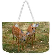 Siblings Visit Weekender Tote Bag