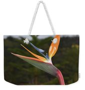 Side View Of A Beautiful Bird Of Paradise Flower  Weekender Tote Bag