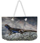 Sierra Fence Lizard 2 - Sierra Weekender Tote Bag