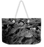 Sierra Nevada's Planer Earth Bw Weekender Tote Bag