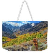 Signs Of Grandeur  Weekender Tote Bag