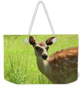 Sika Deer Omagh Weekender Tote Bag