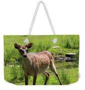 Sika Deer Water Hole Omagh Weekender Tote Bag
