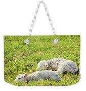 Silence Of The Lambs Weekender Tote Bag