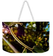 Silhouette Of Climbing Vine On A Sunny Afternoon Weekender Tote Bag