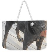 Silly Dog Weekender Tote Bag