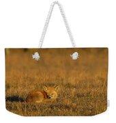 Silly Fox Weekender Tote Bag