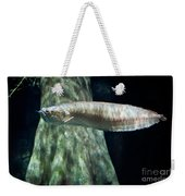 Silver Arowana Fish In Paludarium Weekender Tote Bag