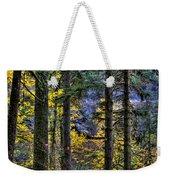 Silver Falls State Park Oregon 2 Weekender Tote Bag