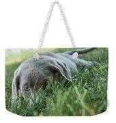 Silver Labrador Retriever  Weekender Tote Bag