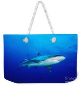 Silvertip Shark In Thailand Weekender Tote Bag