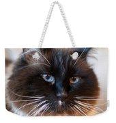 Simon Cat Weekender Tote Bag