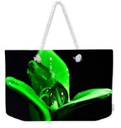 Simply Green Weekender Tote Bag
