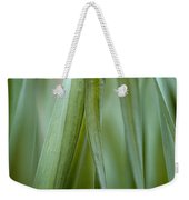 Single Blade Of Onion Grass Leaning - Color Version Weekender Tote Bag