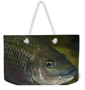 Single Fish Swimming Weekender Tote Bag