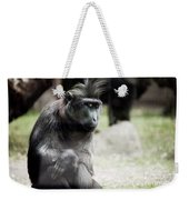 Single Macaque Monkey Sitting Weekender Tote Bag