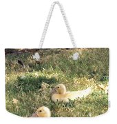 Sitting Ducks Weekender Tote Bag