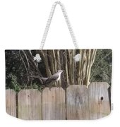 Sitting On A Fence  Weekender Tote Bag