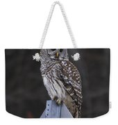 Sitting On The Sign Post Weekender Tote Bag