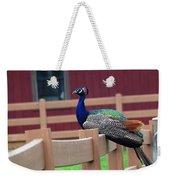 Sitting Peacock Weekender Tote Bag