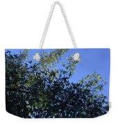 Skies Grass  Weekender Tote Bag