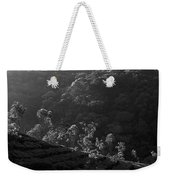 Skn 6707 Tree Parade. B/w Weekender Tote Bag