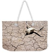 Skull In Desert 2 Weekender Tote Bag by Kelley King