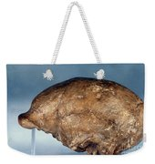 Skull Of Peking Man Weekender Tote Bag
